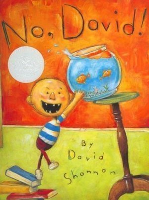 No David! by David Shannon